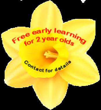 single-daffodil-3